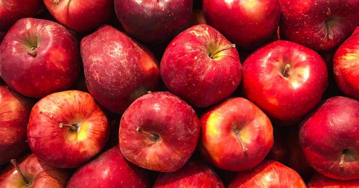 คนเป็นเบาหวานกินผลไม้อะไรได้บ้าง,ผลไม้น้ำตาลต่ำ