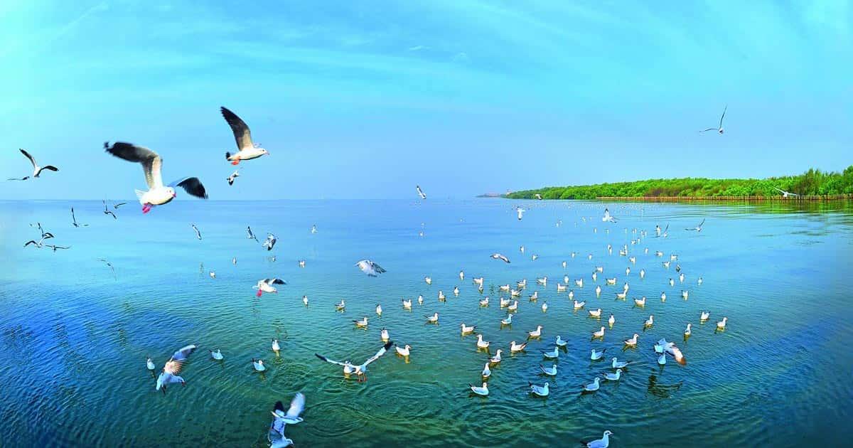 ที่เที่ยวแถวสมุทรปราการ, เที่ยววัดสมุทรปราการ
