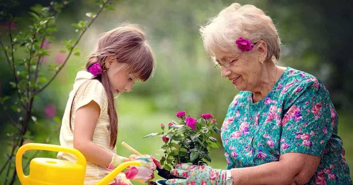 สุขภาพ ผู้สูงอายุ, แนวทางการดูแลผู้สูงอายุให้มีสุขภาพดี