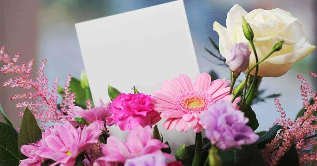 สั่งดอกไม้ออนไลน์ที่ไหนดี ? รวมพิกัดสั่งดอกไม้ในกทม. สั่งง่าย ได้ทุกเทศกาล